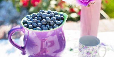 blueberries-864628_1920
