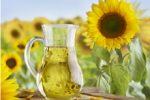 zonnebloemolie diepvries specialiteiten aviko
